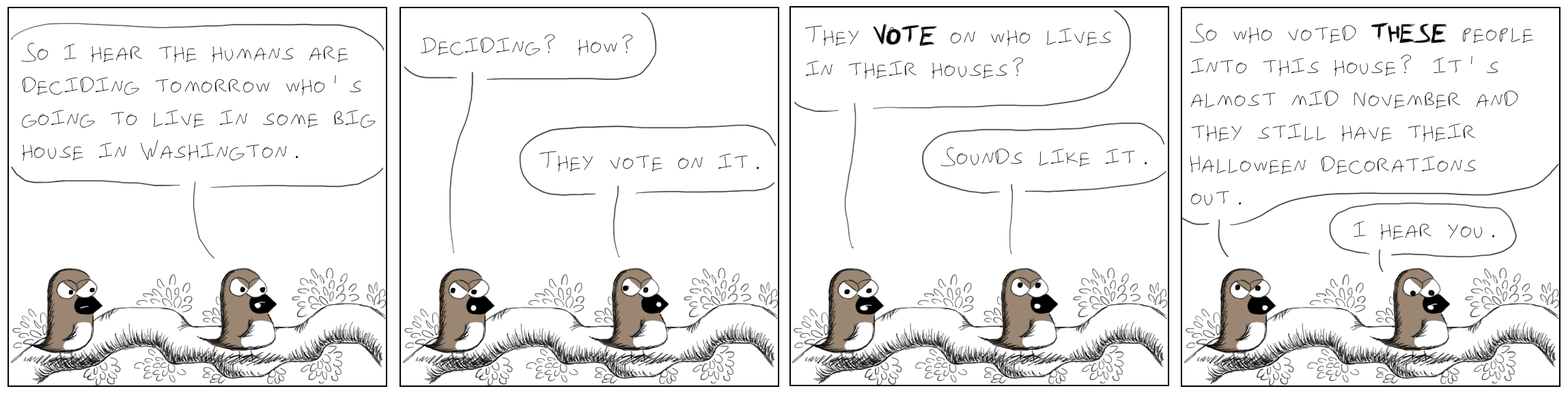 421election